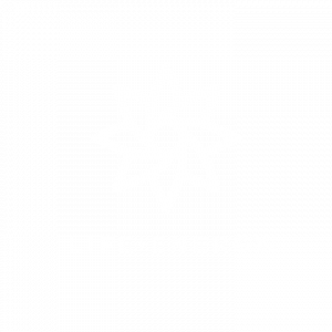 Life-Energy-Logo_Badge-White